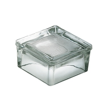 la rochere glassblocks 2